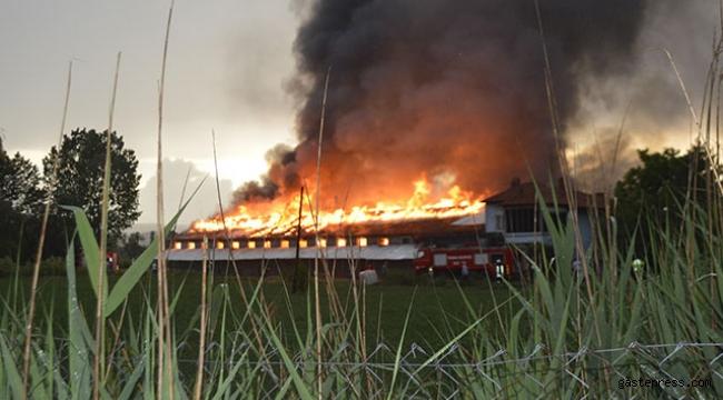 Yıldırım düşen çiftlikte 500 yavru hindi yandı
