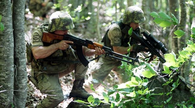 PKK'ya bir günde darbe üstüne darbe