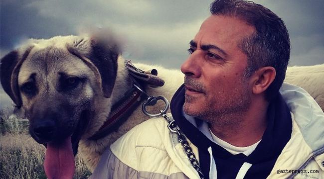 Kangal Köpeklerni Dünya Kayseri'den İzleyecek!