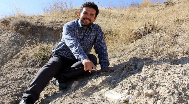 Veterinerin bulduğu 7,5 milyon yıllık fosiller için kazı yapılacak
