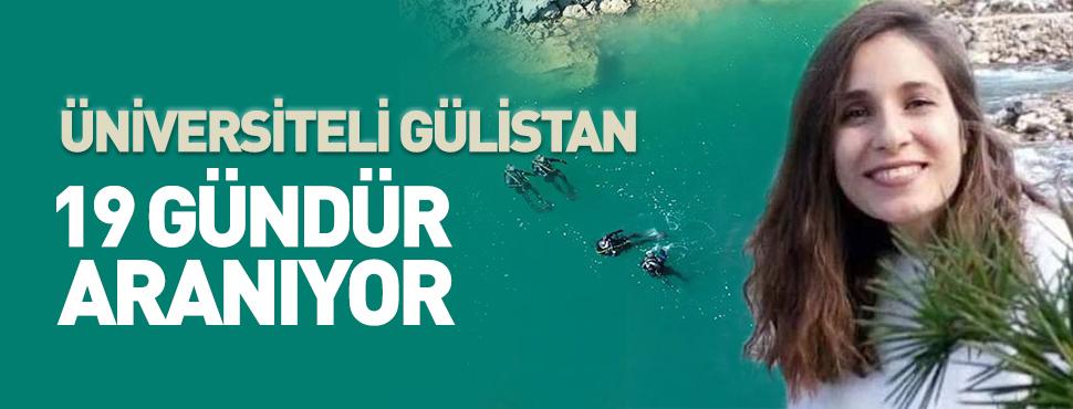 Üniversiteli Gülistan, 750 bin metrekarelik alanda 19 gündür aranıyor