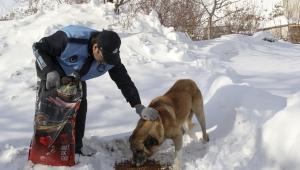 Hacılar Belediyesi Sokak Hayvanlarını Unutmadı
