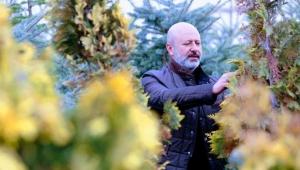 Kayseri Kocasinan Belediyesi, 5 yılda 307 bin fidan ve ağacı toprakla buluşturdu.