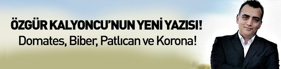 Özgür Kalyoncu'nun yeni yazısı! Domates, Biber, Patlıcan ve Korona!