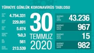 Türkiye'deki koronavirüs vaka ve ölü sayısında son durum (30 Temmuz 2020)
