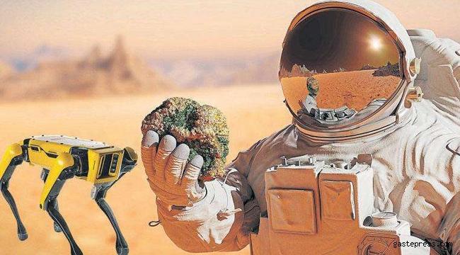 Nasa, Robot Köpeği Mars'a Göndermek İstiyor!