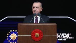 Cumhurbaşkanı Erdoğan, İnsan Hakları Eylem Planı'nı açıkladı!